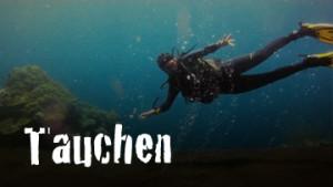 Thumb_Tauchen